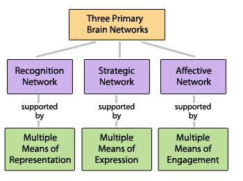 UDL is built on three guiding principle